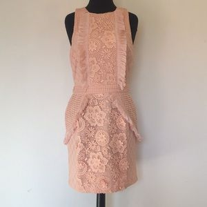 Pink endless rose Dress